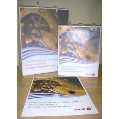 003R98876-1: Пакет пластиковый Xerox Create Range Boutique bag Xsmall (190x236x70mm) 1 шт